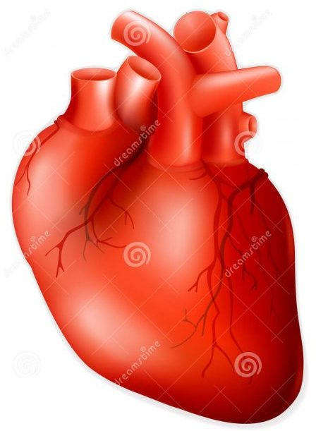 Covid-19 causes heart problems